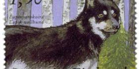 Kenneltoiminta 100 vuotta - Lapinporokoira  postimerkki 1