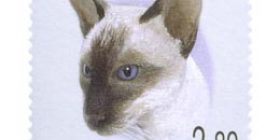 Kissoja - siamilainen  postimerkki 2