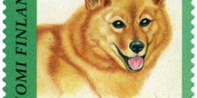 Koiria - Suomenpystykorva  postimerkki 1 luokka