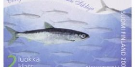 Maakuntakalat - Muikku  postimerkki 2 luokka