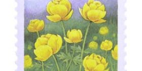 Maakuntakukat - Kullero  postimerkki 2 luokka