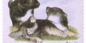 Koiranpentuja - Suomenlapinkoira  postimerkki 1 luokka