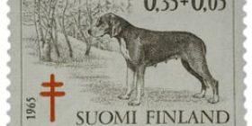 Koiria - Suomenajokoira tummanruskea / punainen postimerkki 0