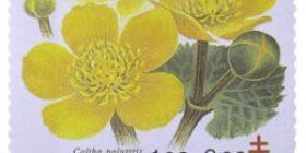 Kukkia - Rentukka  postimerkki 1