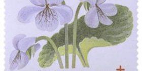 Kukkia - Suo-orvokki  postimerkki 1