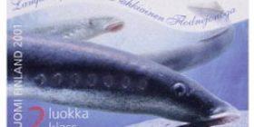 Maakuntakalat - Nahkiainen  postimerkki 2 luokka