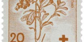 Marjoja - Puolukka punainen postimerkki 20 markka