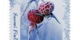 Ruusunmarja  postimerkki 2 luokka
