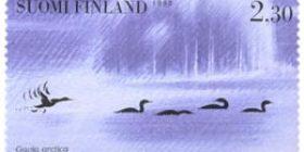 Vesilintuja -Kuikkaparvi  postimerkki 2